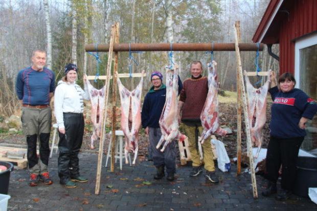 Slaktetid – gris, lam, kalkun og haner