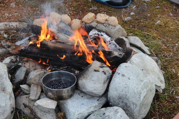 Mat på tur – blåbær syltetøy på bål