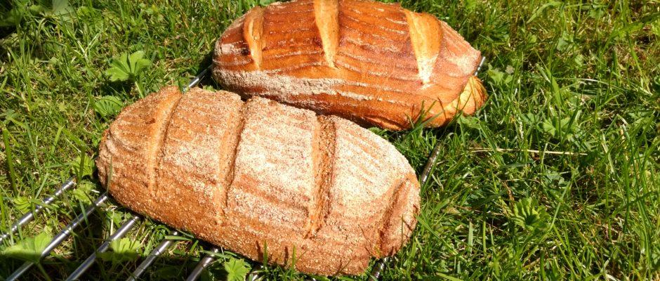 brødbakst på lizas småbruk