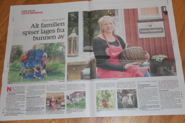 Ringeriksbladet 16.09.2017