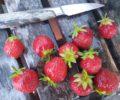 Rørte jordbær – oppskrift